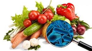 Segurança de Alimentos ISO 22000